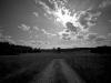 newman_farms-8-lg